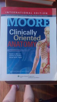 Clinically oriented anatomy seventh edition
