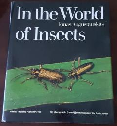 In the world of insects