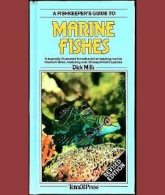 Fish keeper's Guide to Marine Fishes. A superbly illustrated introduction to keeping marine tropical fishes, featuring over 50 magnificent species