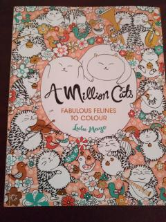A Million Cats. Fabulous felines to colour