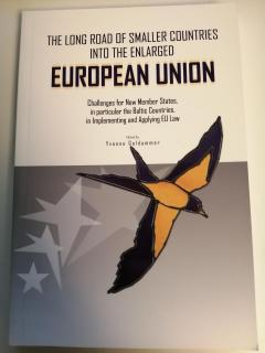 The long road of smaller countries into the enlarged European Union