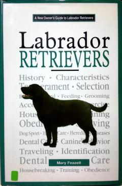 A New Owner's Guide to Labrador Retrievers