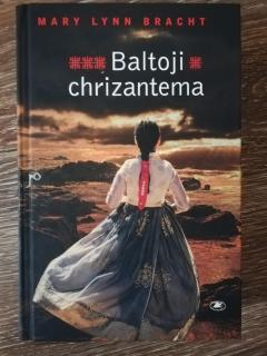 Baltoji chrizantema