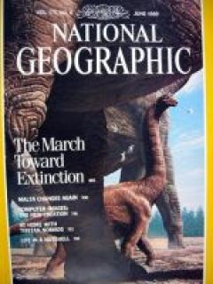 National Geographic, 1989 m., Nr. 6