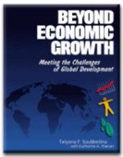 Beyond Economic Growth: Meeting the Challenges of Global Development